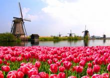 Holiday lettings in the Netherlands